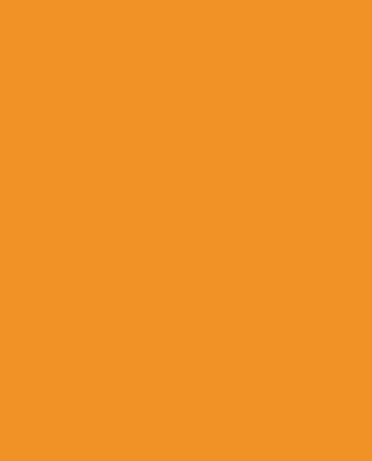 Vibe Orange Background